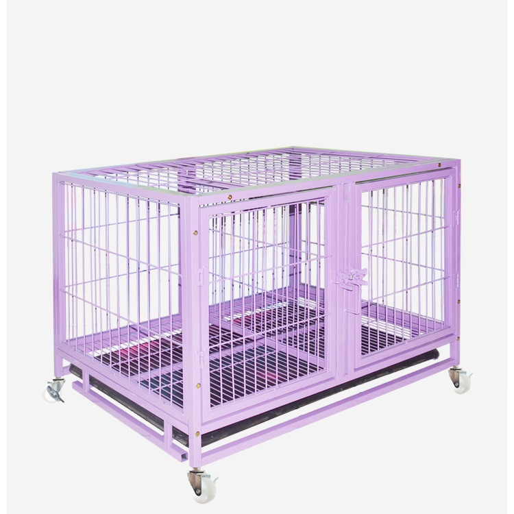 Foster cage for small medium dog 170108