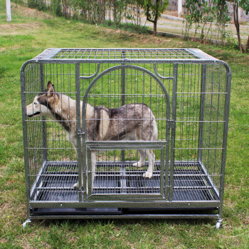 Classical dog cage  170101
